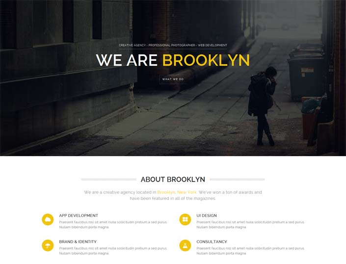 Brooklyn - one page wordpress theme