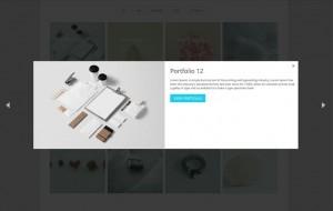 advance portfolio grid detail