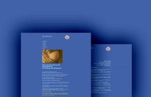 webseite vor der umstellung auf wordpress