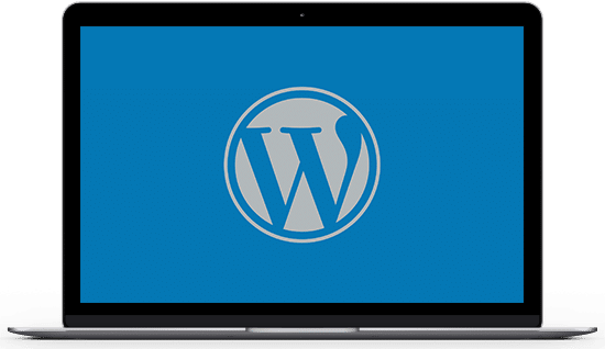 laptop wordpress support