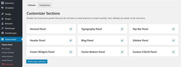 Customizer Sections