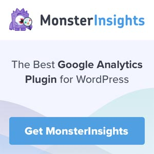 monsterInsights banner