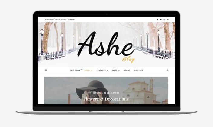 Ashe Blog