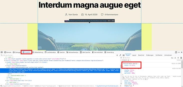 Screenshot Inspektor in der Browser Konsole