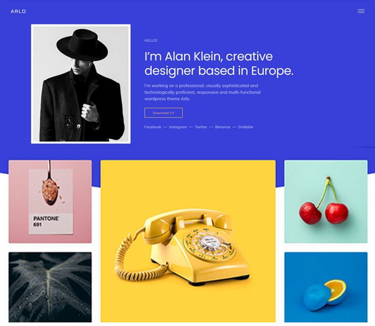 ARLO WordPress portfolio themes