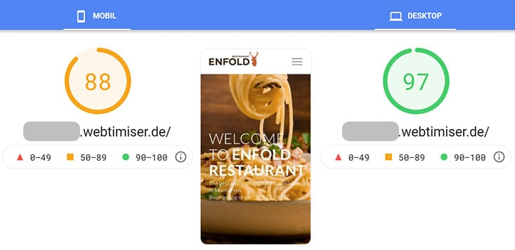 Enfold Theme Werte in Google Page Speed Insights
